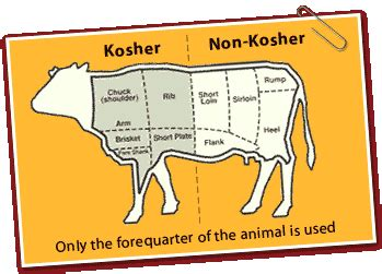 cuisine casher definition on activities for teaching kosher bible belt