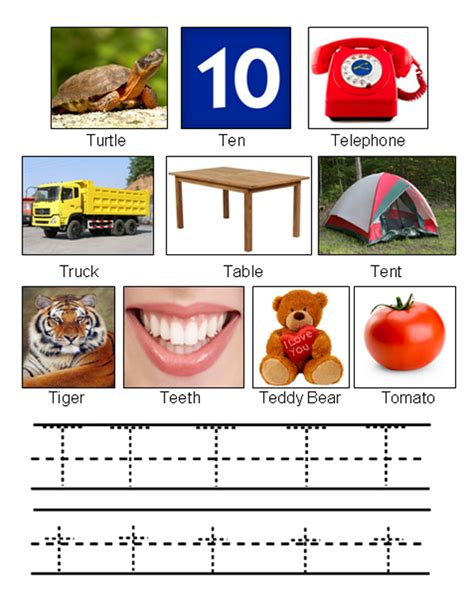 things that start with letter t with objects that picture of objects starting with letter t 33428