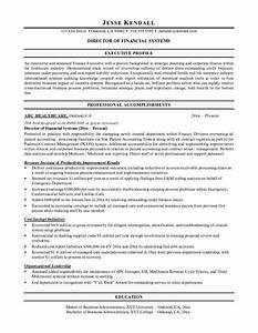 fancy best cfo resume examples ideas example resume With cfo resume writing services
