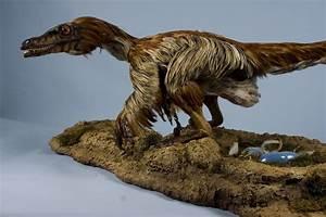 ART Evolved: Life's Time Capsule: Velociraptor ...  Velociraptor