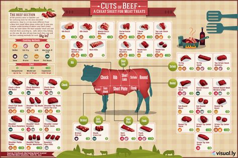 cuts of beef chart a super simple guide to cuts of beef prices and how to cook it infographic