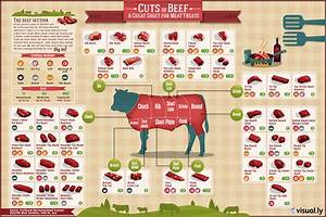 Different Cuts Of Beef  Many Cuts Of Beef Explained
