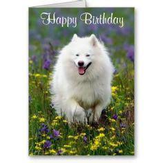 Ya Ll Ready For My Birthday Birthday Meme On Sizzle Dachshund Birthday Meme Search Birthday Cards