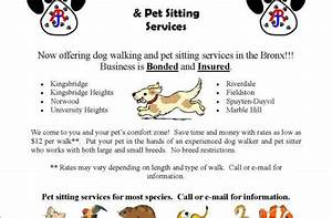 Dog walking pet sitting services for Dog walking and pet sitting services