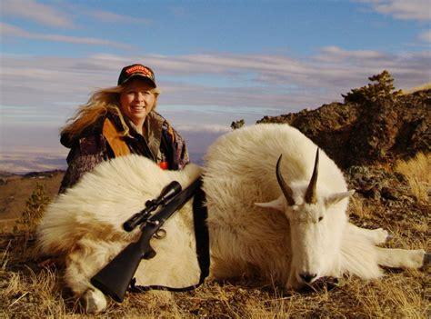 montana mountain goat hunting