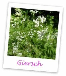 Mittel Gegen Gras Zwischen Steinen :  ~ Michelbontemps.com Haus und Dekorationen