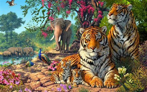 Jungle Nature Wallpapers Animals