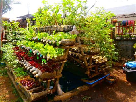 organic kitchen garden how to plan an organic kitchen garden greenmylife 1227