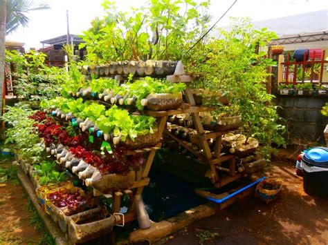 How To Plan An Organic Kitchen Garden?  Greenmylife