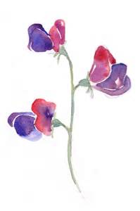 Watercolor Sweet Pea Flower Tattoo