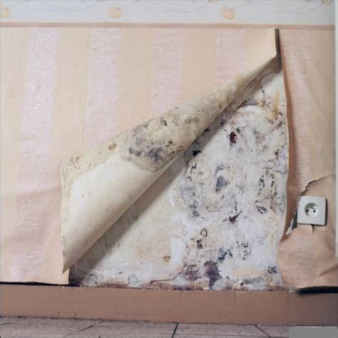 probleme humidité chambre humidité sur un mur extérieur bricobistro