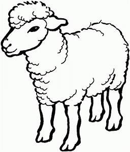 SHEEP DRAWING - ClipArt Best