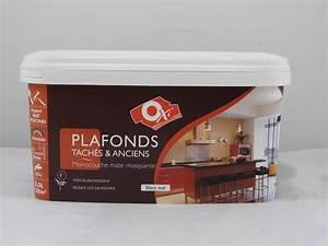 Peinture Pour Plafond : peinture blanc mat pour plafonds anciens t ch s oxi 2 5l ~ Melissatoandfro.com Idées de Décoration