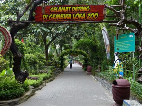 kebun binatang gembira loka picture  gembira loka zoo