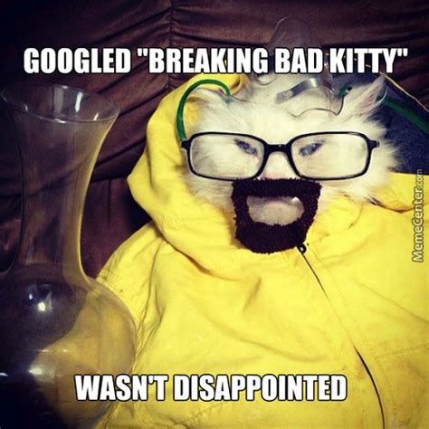Bad Kitty Meme - bad kitty memes best collection of funny bad kitty pictures