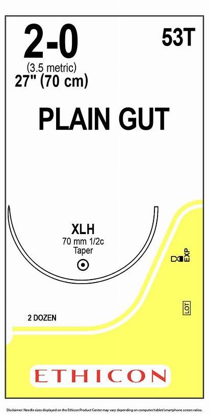 Gut Suture Plain Ethicon 53t Needle Fast