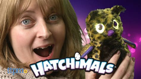 Hatchimals Golden Lynx From Spin Master