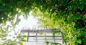 Rever De Jardin : home garden 3 cabanes de jardin qui font r ver et 6 conseils pour cr er la v tre ~ Carolinahurricanesstore.com Idées de Décoration
