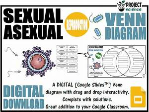 Sexual And Asexual Reproduction Digital Venn Diagram