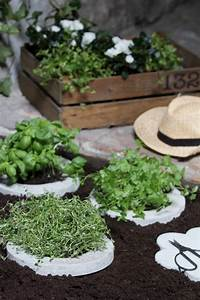 Small herb garden landscaping pinterest for Small herb garden