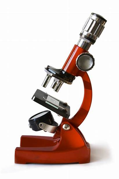 Types Microscopes Microscope Uses Biology Science Electron