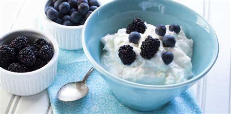 Greek yogurt, a beneficial source of nutrients - Yogurt in