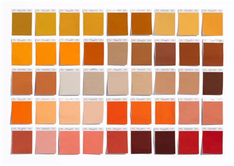 tone color is synonymous with how pantone became the definitive language of color co