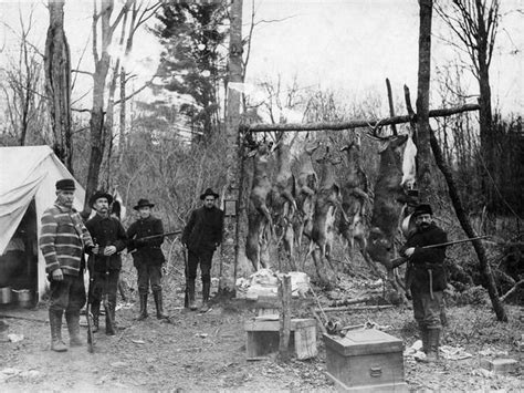 deer hunters camp photograph wisconsin historical society
