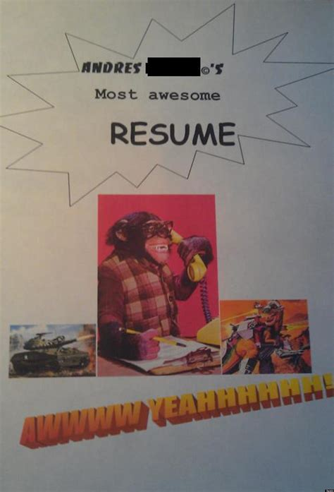 funny resumes cover letters