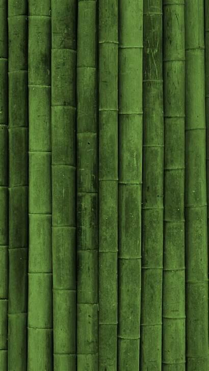 Vertical Portrait Bamboo 4k Wallpapers Stick 2560