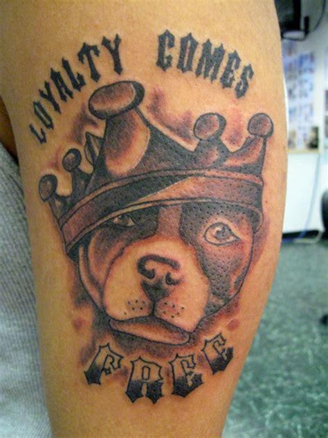 latest pit bull tattoo designs  ideas