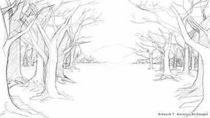 Forest Scenery Sketch Drawing Draw Coloring Drawings