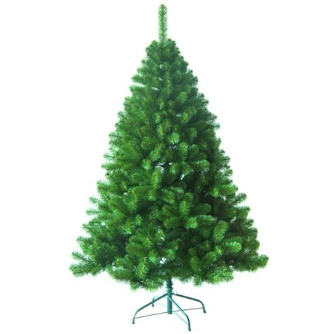 noma 6ft penrith pine groves nurseries