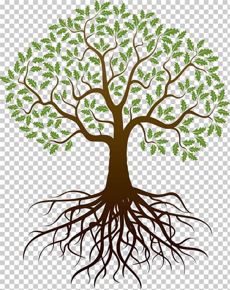 tree roots cliparts   clip art