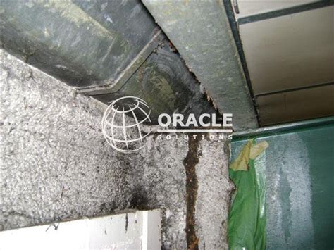gallery  asbestos sprayed insulation oracle solutions