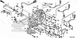 Honda Atv 2015 Oem Parts Diagram For Rear Crankcase Cover