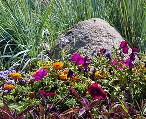 Die Schönsten Steingärten : gr ser f r steingarten diese passen perfekt ~ Bigdaddyawards.com Haus und Dekorationen