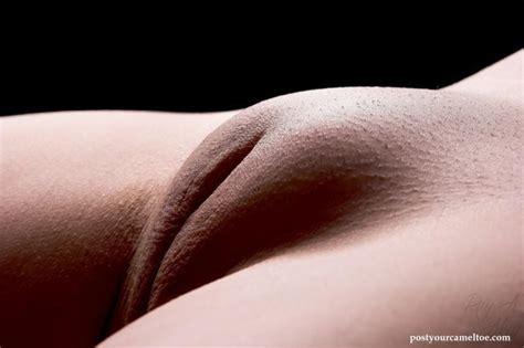 Huge Mons Pubis Shaved Camel Toe Image 36980