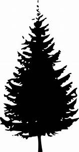 Cedar Tree Drawing - Cliparts.co