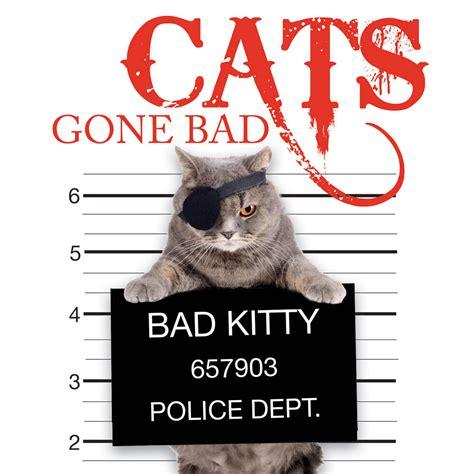 bad pets cats gone books spilsbury