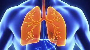 Beyondspring Looks To Tap China For Lung Cancer Drug