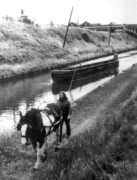 Horses On A Boat by Canal Boat Search Canals