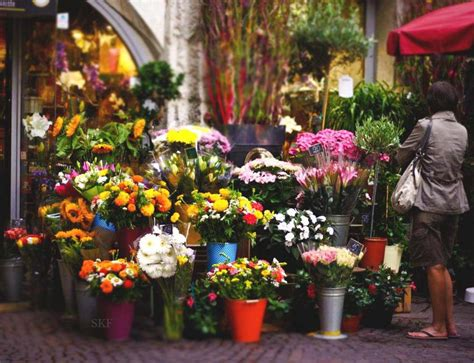 flower shop wallpaper gallery