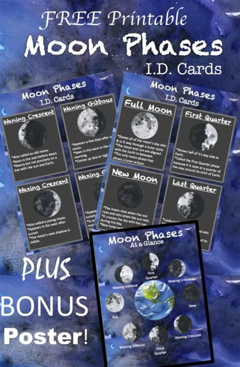 printable moon phases id cards bonus poster