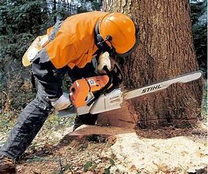 Tronconneuse Stihl A Batterie Prix : tron onneuses pour travaux forestier ~ Premium-room.com Idées de Décoration