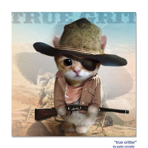 37 Best Images About Catscowboycowgirl On Pinterest