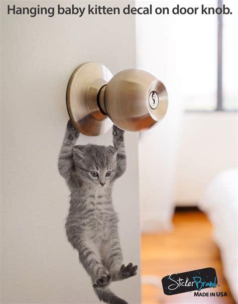 cute baby hanging kitten door decal sticker