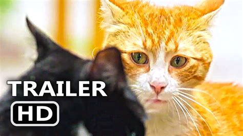 Kedi Official Trailer + Clip (2017) Cats Documentary Movie