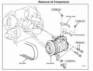 Wiring Diagram Lexu 2000