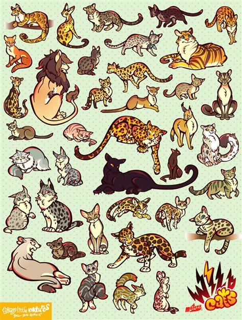 wild cats  mofuwa  deviantart